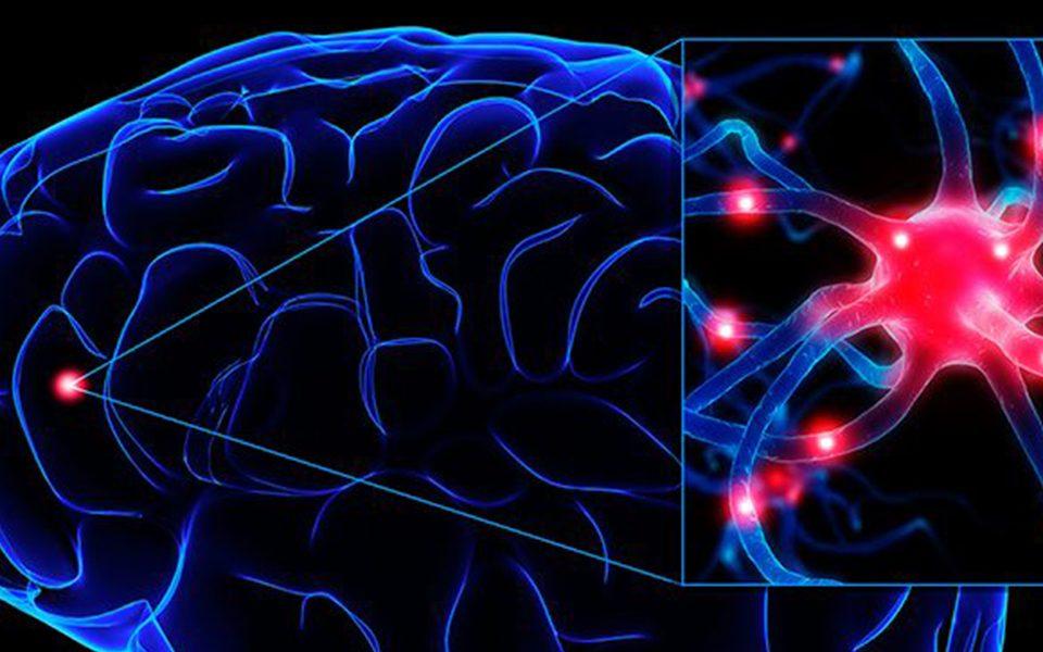 Cirurgia para Epilepsia